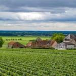 別の視点から探る!「ワインの王様」ブルゴーニュワインの魅力