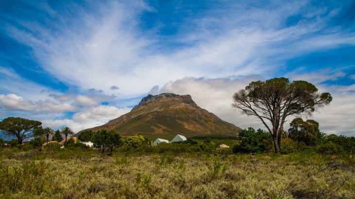 南アフリカワインの産地ステレンボッシュ