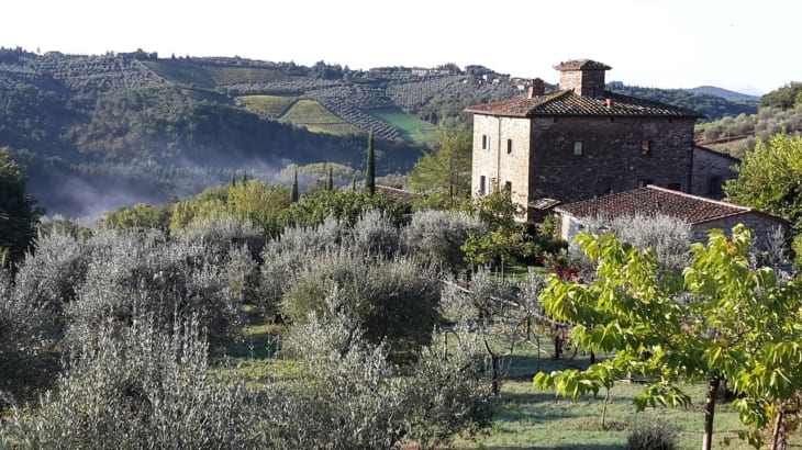 マルヴァジーアのおもな産地イタリア