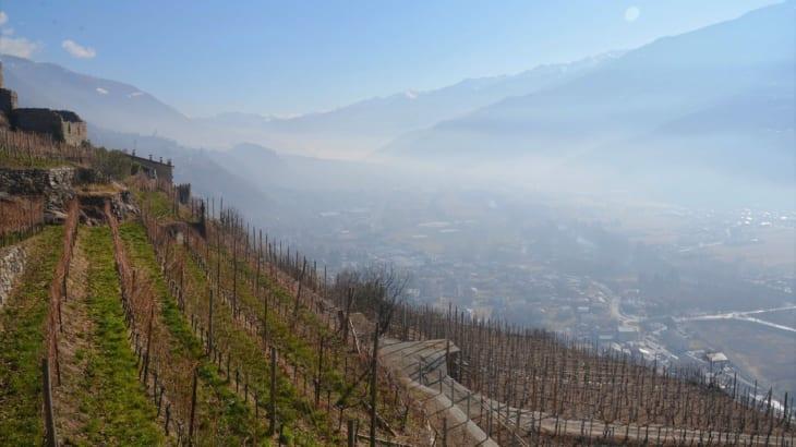 フランスワインの中でも知る人ぞ知るマイナーなワインの銘醸地サヴォワのワインについて