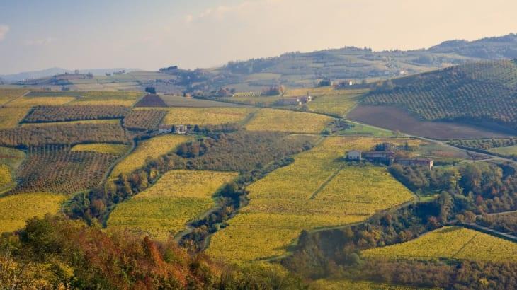 ピエモンテ北部のガッティナーラで造られるワイン