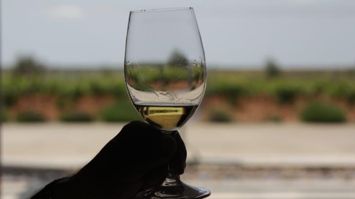 3分の2がプルミエ・クリュという恵まれたテロワールを持つサントーバンのワインとは